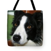 Can I Go Out Tote Bag by Deborah Benoit