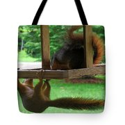 Can I Sneak Up There Now Tote Bag