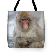 Can You Help? Tote Bag