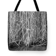 Can You See Me? Tote Bag
