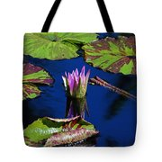 Can You Sit For Awhile Tote Bag