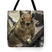 Can You Spare Me Some Food? Tote Bag