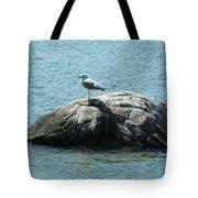 Cana Island Wi Tote Bag