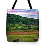 Canaan Valley Evening Tote Bag