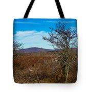 Canaan Valley West Virginia Tote Bag