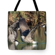 Canada Geese 5659-092217-1cr-p Tote Bag