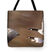 Canada Geese In Flight Tote Bag