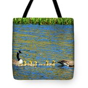 Canada Geese With 5 Goslings Tote Bag
