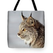 Canada Lynx Up Close Tote Bag