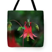 Canadian Columbine Tote Bag
