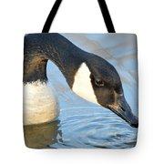 Canadian Drink Tote Bag