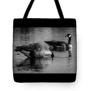 Canadian Geese 2 Tote Bag