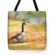 Canadian Geese 6 Tote Bag