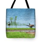 Canadian Geese - Wichita Mountains - Oklahoma Tote Bag