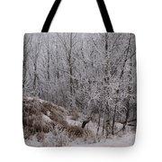 Canadian Ice Fog  Tote Bag