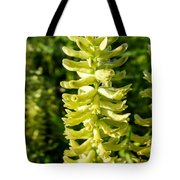 Canadian Milkvetch Wildflower Tote Bag