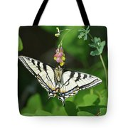 Canadian Tiger Swallowtail Butterfly-underside Tote Bag