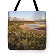 Canadian Tundra In Evening Light. Tote Bag