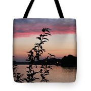 Canal Sunset Tote Bag