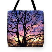 Canal  Winter Sunset  Pt Tote Bag
