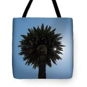 Date Palm Starburst Tote Bag