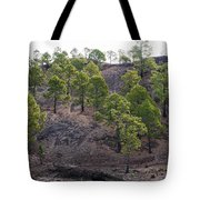 Canary Pines Nr 3 Tote Bag