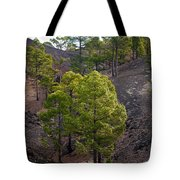 Canary Pines Nr 4 Tote Bag
