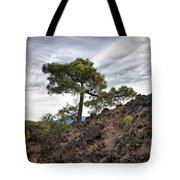 Canary Pines Nr1 Tote Bag