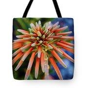 Candelobra Aloe In San Diego Tote Bag