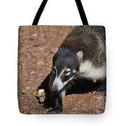 Candid Of A Coati Tote Bag