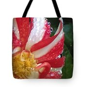 Candy Cane Dahlia Tote Bag
