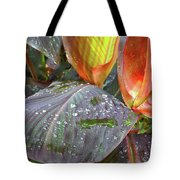Canna Lilies II  Tote Bag