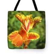 Canna Lily Tote Bag by Kenneth Albin