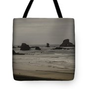 Cannon Beach 1 Tote Bag