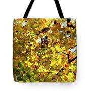 Canopy Of Autumn Leaves  Tote Bag