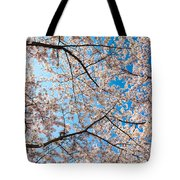 Canopy Of Cherry Blossoms Tote Bag