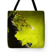 Canopy View Tote Bag