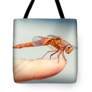 Can't Make Up My Mind Tote Bag