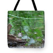 Can't Take My Eyes Off You Tote Bag