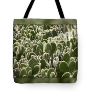 Canvas Of Cacti Tote Bag