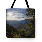Canyon Afternoon Tote Bag