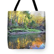 Canyon Autumn 2 Tote Bag