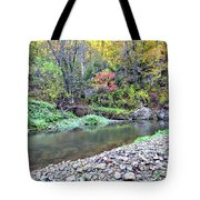Canyon Autumn Tote Bag