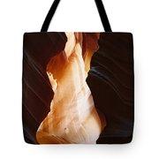 Canyon Birth Tote Bag