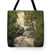 Canyon Falls 2 Tote Bag