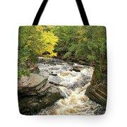 Canyon Falls Tote Bag