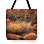 Canyon Grasses Tote Bag