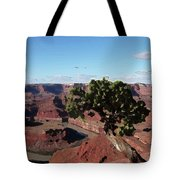 Canyon Impression Tote Bag