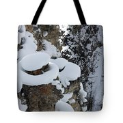 Canyon Ledge Tote Bag