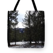 Canyon Mischief Tote Bag